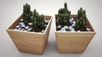 cactus 3d lwo