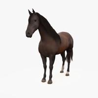 horse andalusian bay 3d max