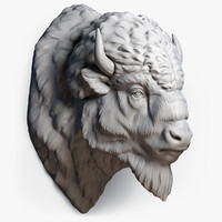 3d american bison buffalo head