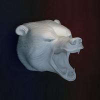 bear head with a grin