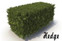 x hedge