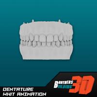 3d animation dentature model