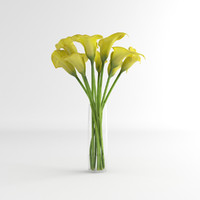 3d calla lily glass model