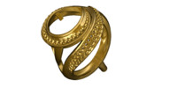 Gold ring ( a 01)