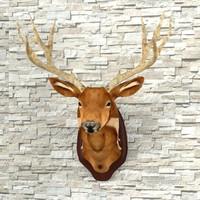 Taxidermy Deer