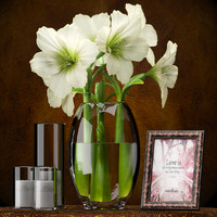 3d x light vase photo