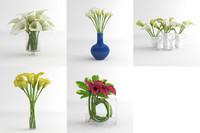 3d calla lily flower model