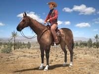 3d cowboy horse