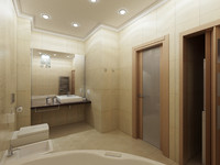 max modern washroom