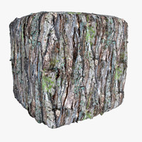Bark 28 - Photogrammetry Texture