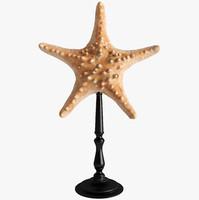 3d model sea stars starfish stand