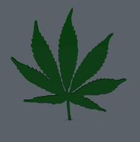 marijuana leaf c4d