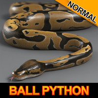 max normal ball python
