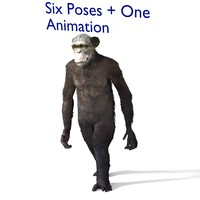 3d model chimp chimpanzee