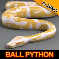 3d max albino ball python