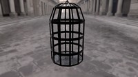 3d old cage
