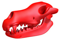 print-ready dog skull printing 3d model