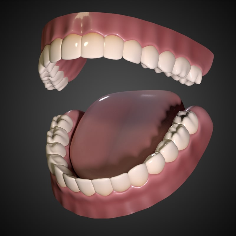 mouth_interior_00.jpg