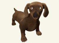 fbx dachshund dog