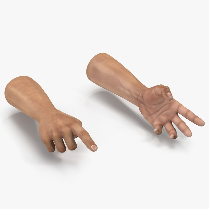 Man Hands Rigged 3dsmax vray 3d model 00.jpg