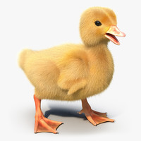 duckling rigged 3d max