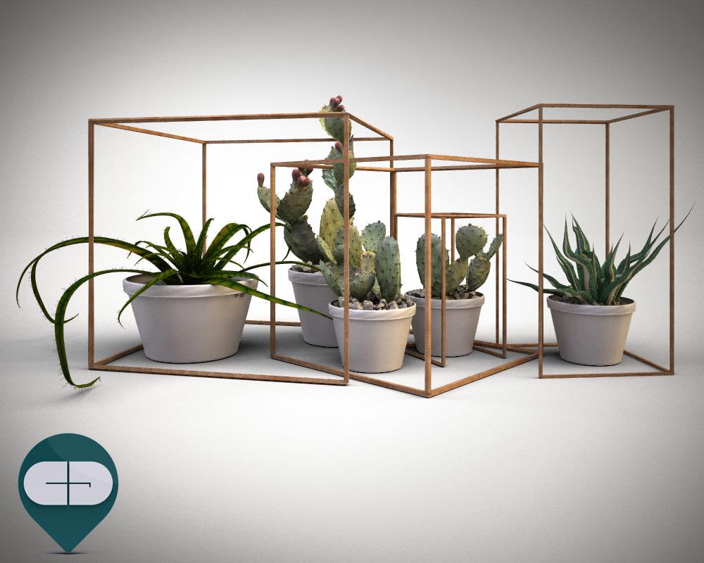 vista vasetti cactus 01.jpg