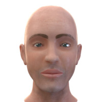 3d male head m
