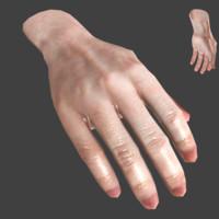 realistic hand base mesh 3d model