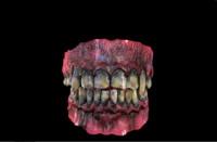 3d monster teeth model