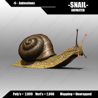 3d model of snail animations