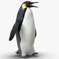 emperor penguin rigged fur ma