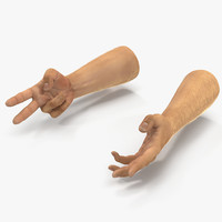 3d man hands 2 fur model