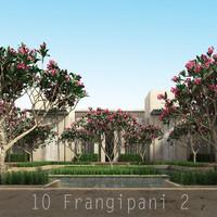 2 flower 10 tree obj