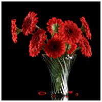 3d red gerber model