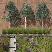 modern flowerbed birches flowers 3d max