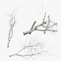 fallen logs birch 3d model