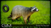 3d model animal simon raccoon