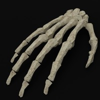 pbr uv-textured hand bones 3d 3ds