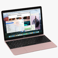 max apple macbook pink