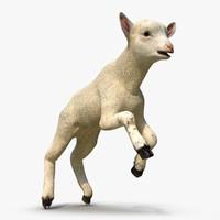 max lamb pose 3