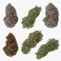 max marijuana buds