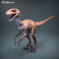 raptor dinosaur zbrush version 3d obj