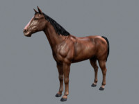 Horse (Game Model)