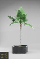 outdoor plant 3d max