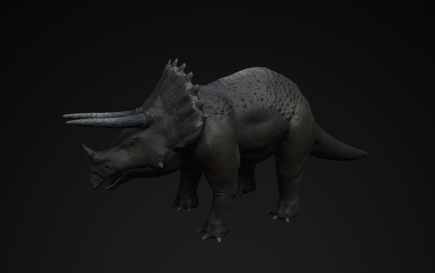 Triceratop_01.jpg