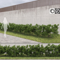 Bushes for Archviz