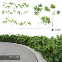 Multiscatter Shrubs
