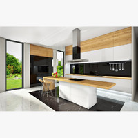 Interior kitchen modern
