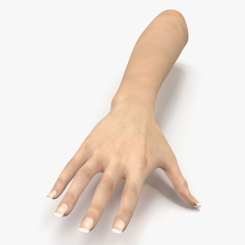 Female Hand 3d model 00.jpg