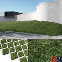 max grass lawn